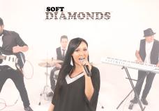 Show para Recepciones SOFT DIAMONDS